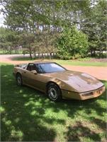 1984 Corvette